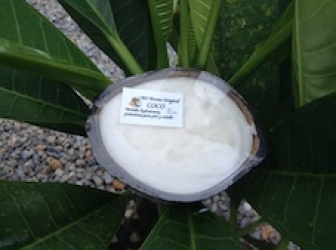 jabon coco en cascara de coco